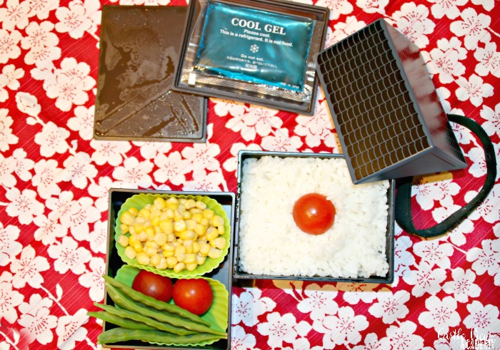 Japan flag bento at Castle View Academy homeschool