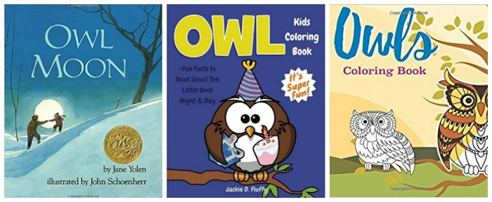 owl activity books at Castle View Academy homeschool