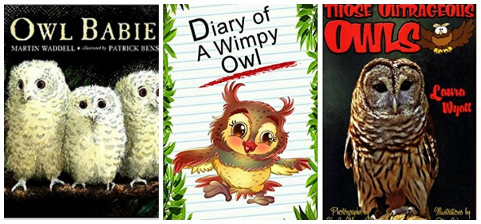 owl books for kids at Castle View Academy