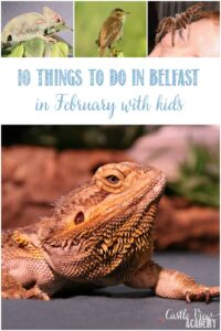 10 Things To Do In Belfast in February With Kids and Castle View Academy