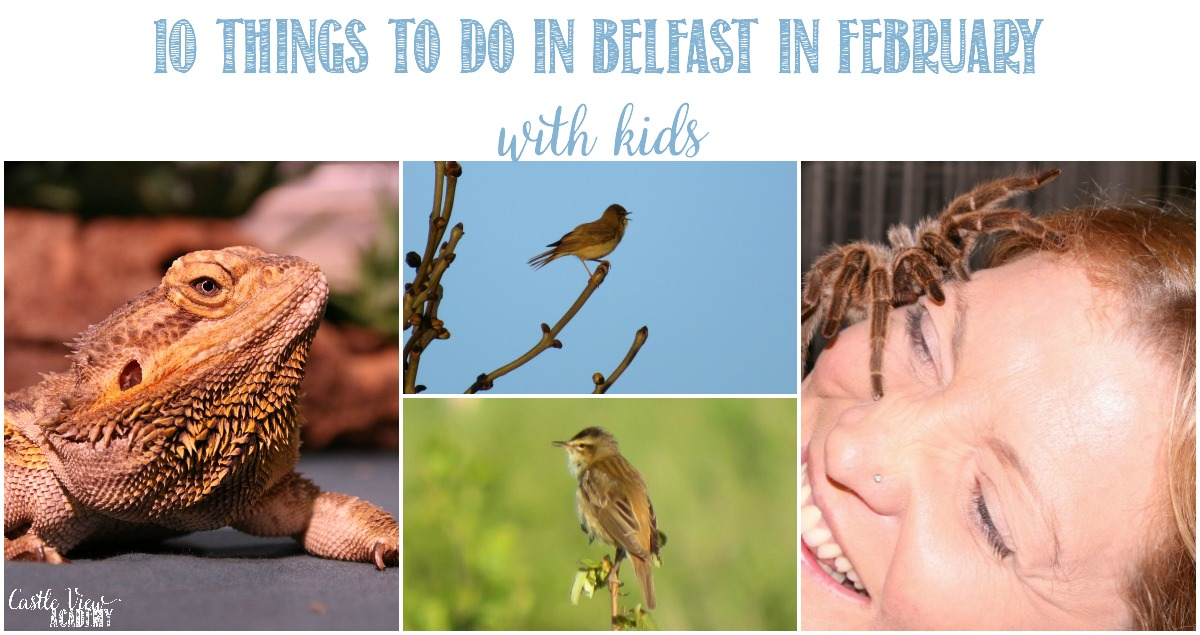 10 Things To Do In Belfast in February With Kids and Castle View Academy homeschool