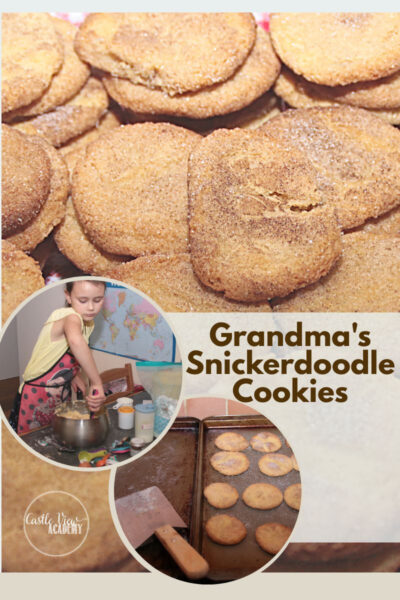 Grandma's Snickerdoodle Recipe