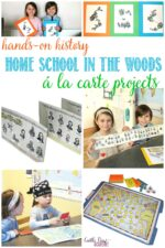 Castle View Academy homeschool reviews Home School In The Woods A La Carte projects