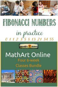 Castle View Academy homeschool reviews NatureGlo's eScience with Fibonacci numbers