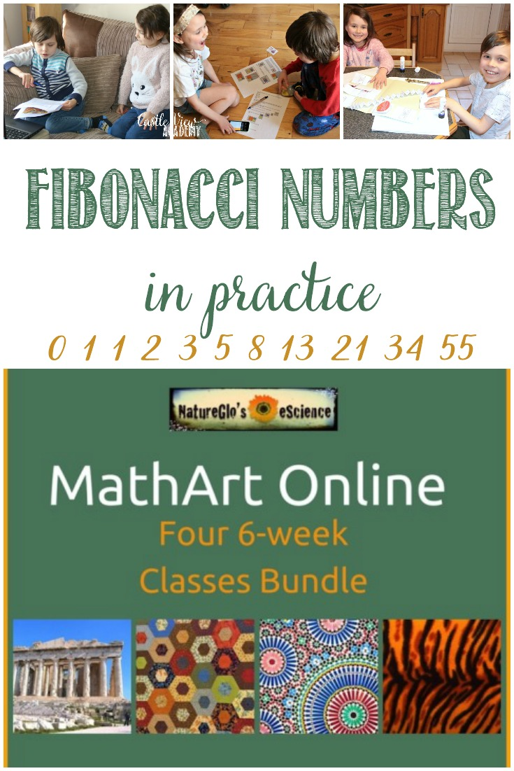 NatureGlo's eScience; Fibonacci Numbers In Practice  #hsreviews #escience #natureglo #math #Fibonacci #homeschooling
