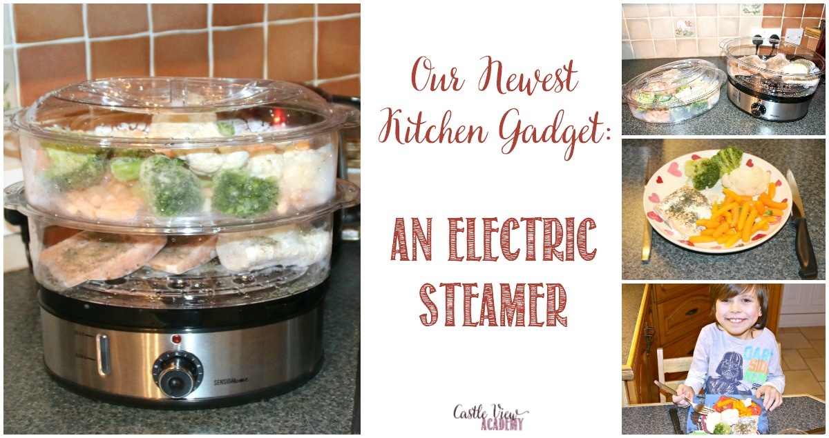 Our Newest Kitchen Gadget, An Electric Steamer at Castle View Academy homeschool