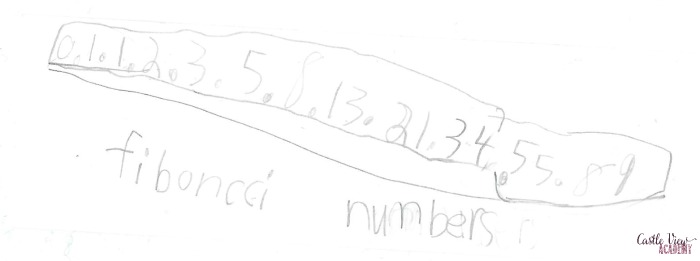 obsessed with Fibonacci numbers at Castle View Academy homeschool