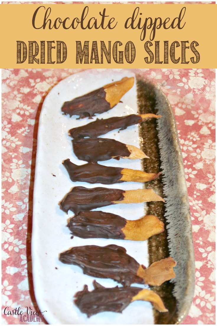 Chocolate Dipped Dried Mango Delights that only take minutes to make and are dairy-free friendly, too! #chocolate #mango #recipe
