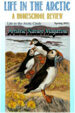 Life In The Arctic, Artistic Nature-Science Unit Study review by Castle View Academy homeschool