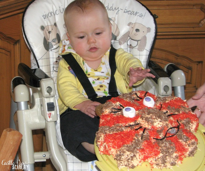 Tristan's first birthday party at Castle View Academy homeschool