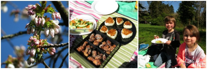 Castle View Academy has a hanami picnic, A Cook's Journey to Japan, Perfect Picnic Recipes