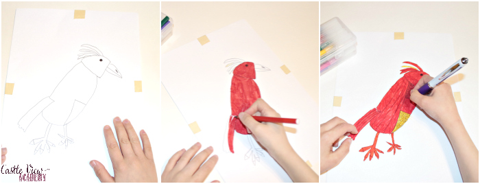 Drawing a Phoenix Dream Pet at Castle View Academy homeschool