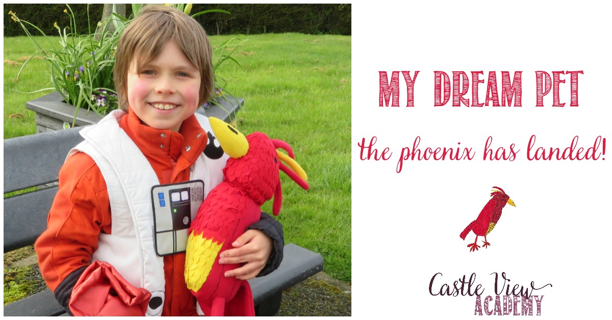 The Phoenix Dream Pet has landed at Castle View Academy homeschool
