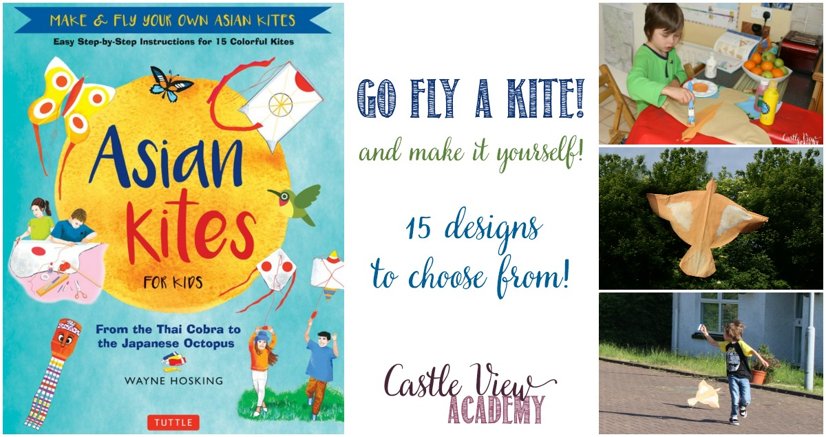 Asian Kites reviewed by Castle View Academy