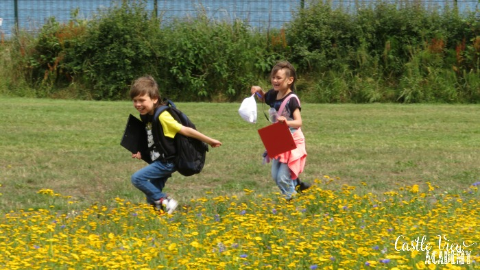 Castle View Academy is on a wildflower and butterfly count