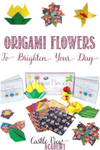 Origami Flowers To Brighten Your Day at Castle View Academy homeschool