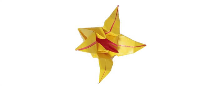 Origami Lily at Castle View Academy