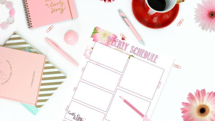 weekly schedule CVA
