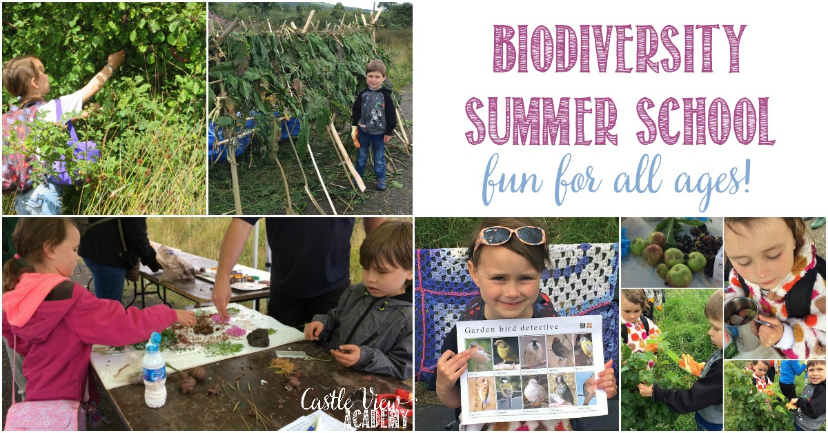 Castle View Academy attends a Biodiversity Summer School with the Conservation Volunteers