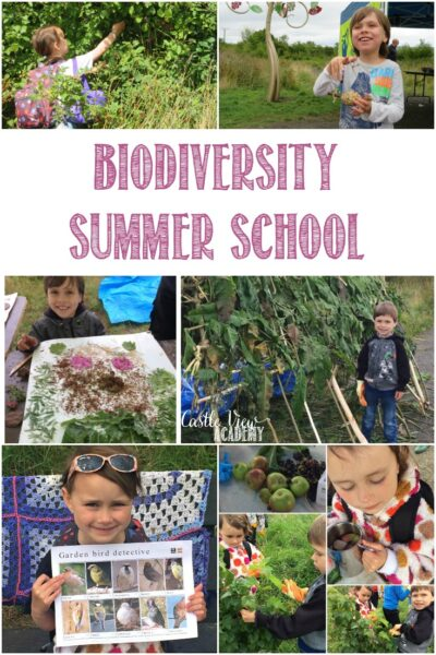 Castle View Academy homeschool attends a Biodiversity Summer School with the Conservation Volunteers