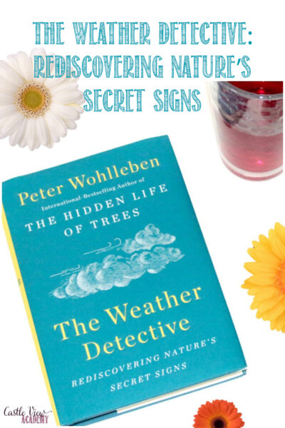 Castle View Academy homeschool reviews The Weather Detective