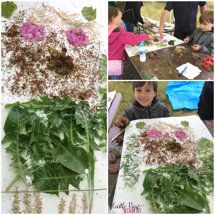 Castle View Academy makes a nature collage at the Biodiversity Summer School