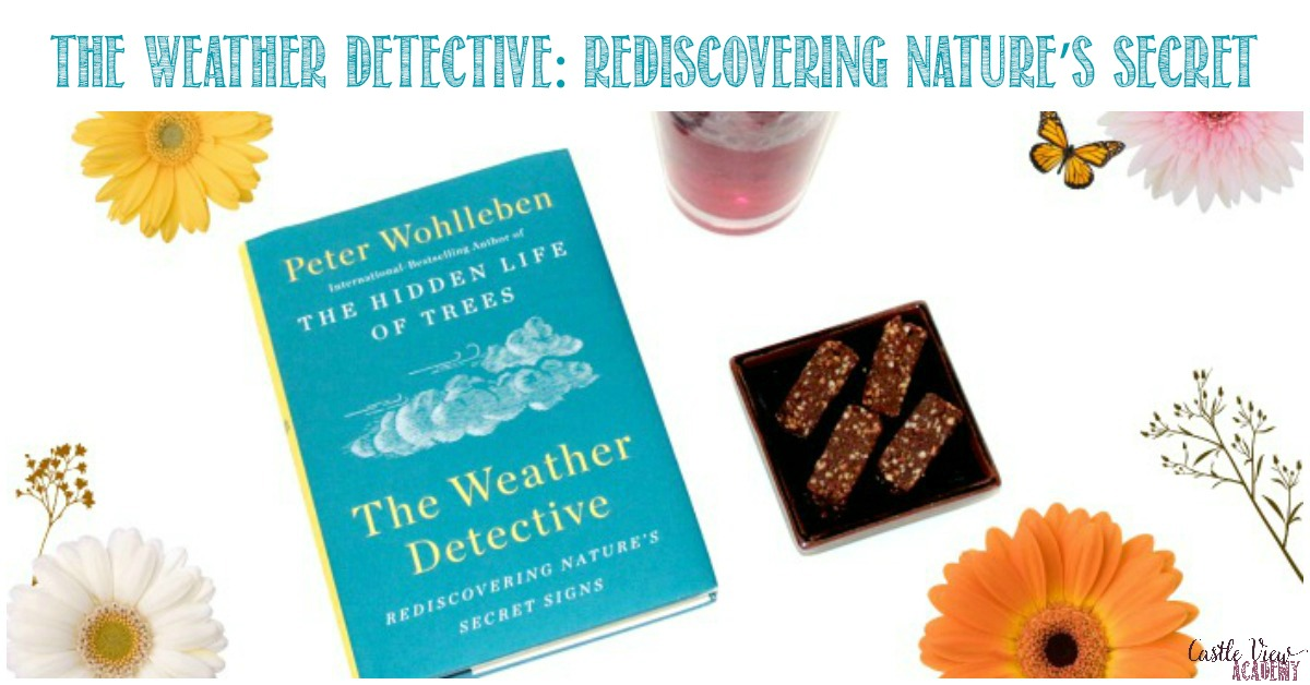 Castle View Academy reviews The Weather Detective
