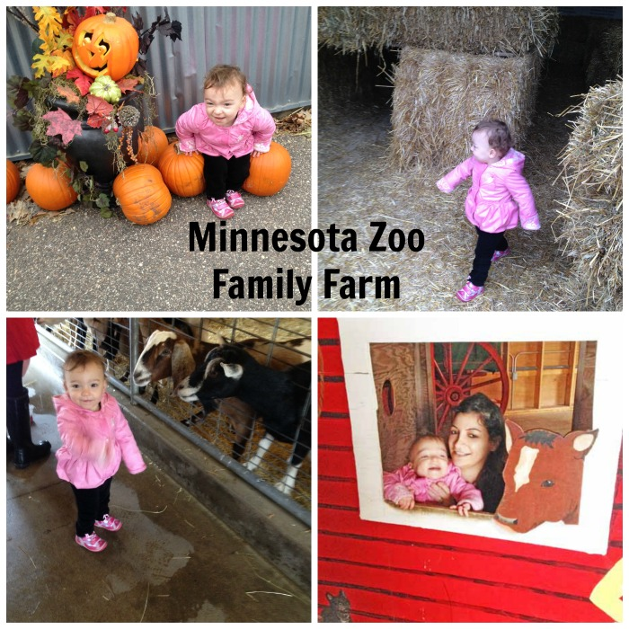 Minnesota Zoo Fall at the Family Farm