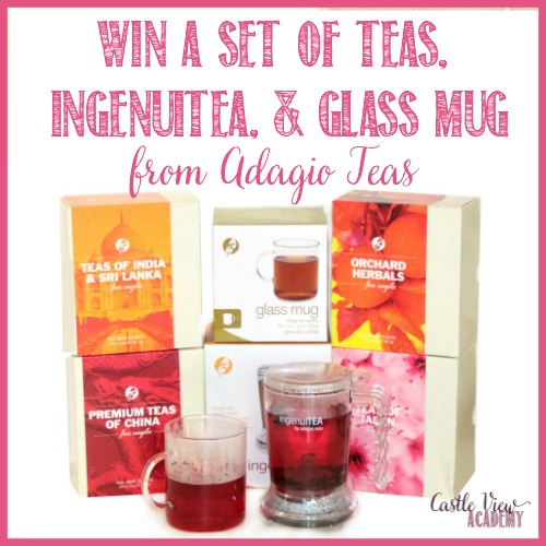 Win a set of teas and infuser from Adagio Teas from Castle View Academy