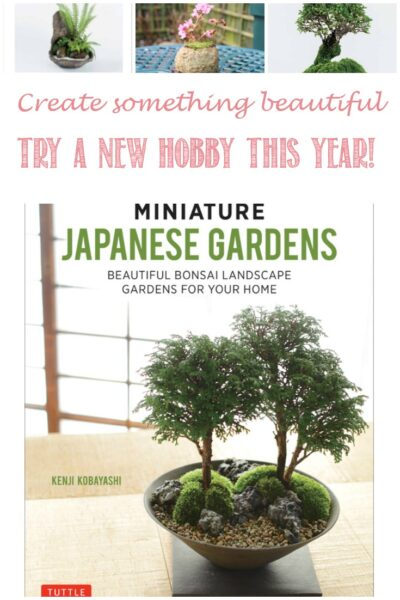 Create a beautiful Miniature Japanese Garden this year! Castle View Academy homeschool