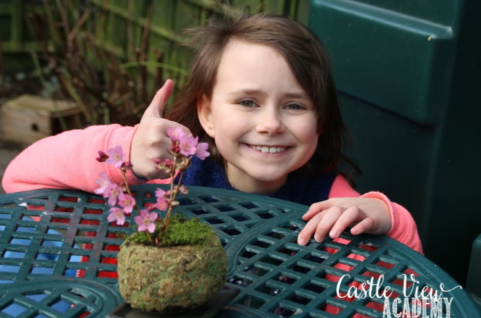 Our Mini Japanese Garden gets a seal of approval at Castle View Academy homeschool