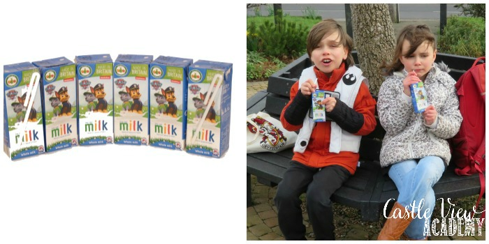 Castle View Academy reviews Appy Kids Co Whole Milk