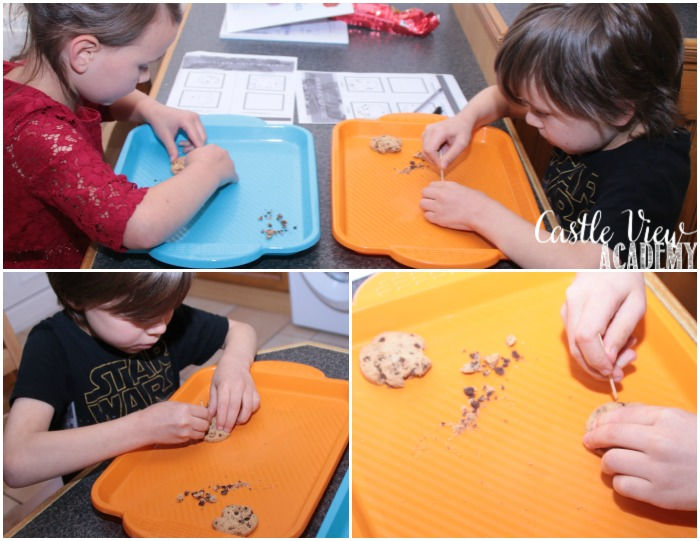 Mining For Chocolate Chips at Castle View Academy homeschool, Frank Slide unit study