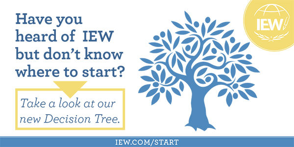 iew decision tree