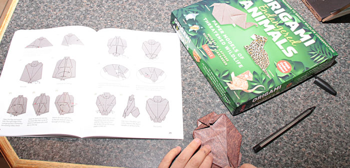 Castle View Academy folding an origami gorilla from origami endangered animals