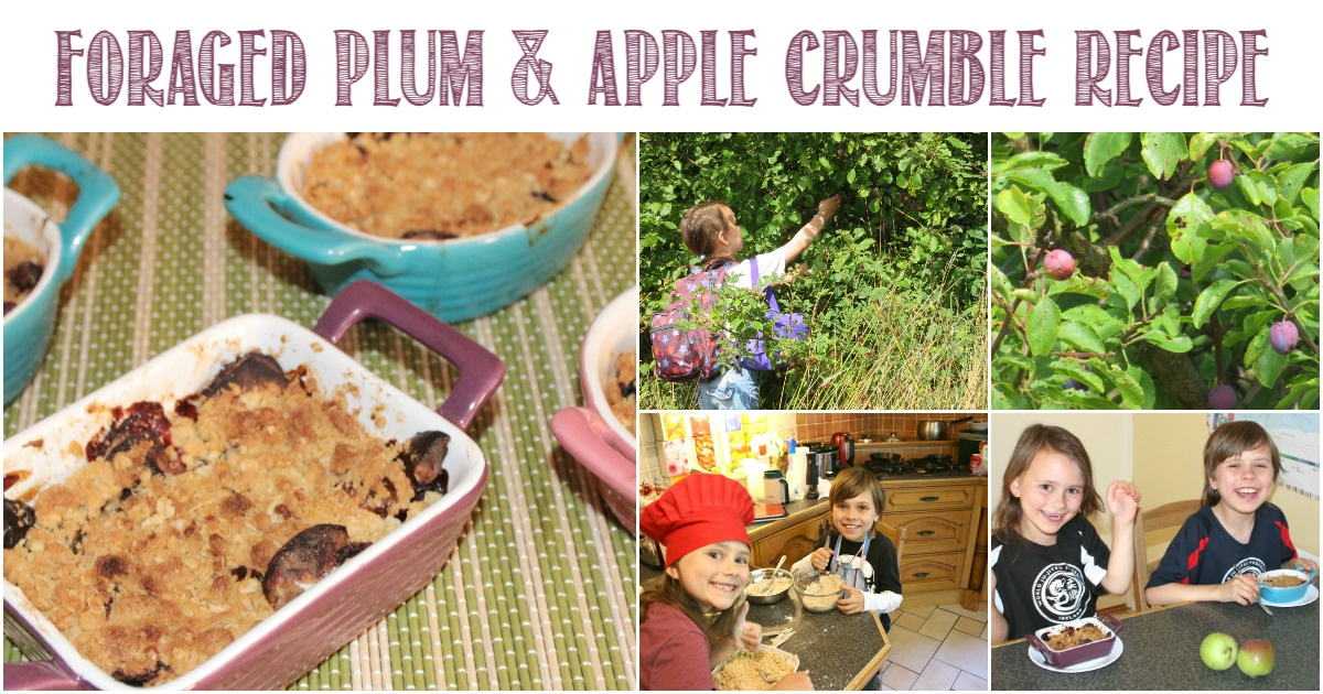 Foraged Plum & Apple Crumble Recipe from Castle View Academy homeschool
