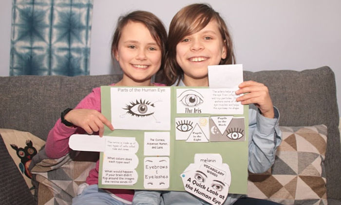 completed human eye lapbook at Castle View Academy homeschool