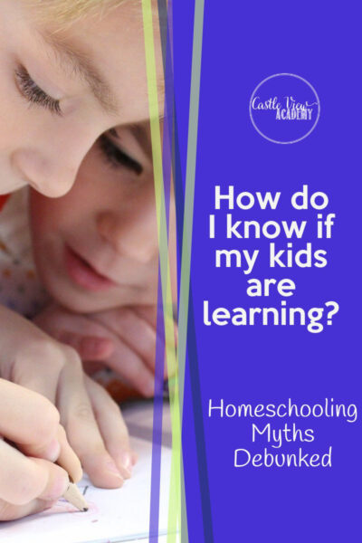 How Do I Know If My Kids Are Learning - Homeshool Myths Debunked at Castle View Academy
