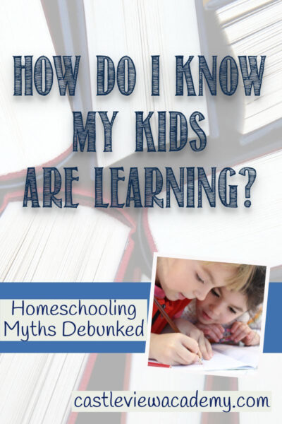 How Do I Know My Kids Are Learning - Homeshool Myths Debunked