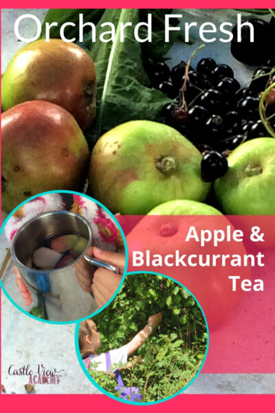 Orchard Fresh apple & blackcurrant tea