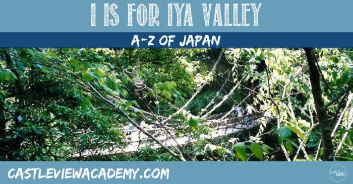 Japan A-Z I Is For Iya Valley Shikoku
