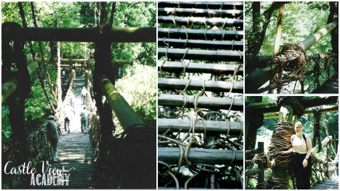 Vine bridge in Iya Valley