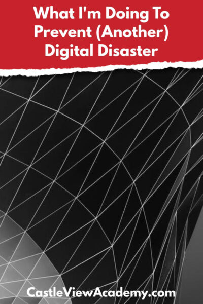 What I am doing to prevent another digital disaster