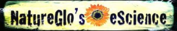 NatureGlo s eScience Logo