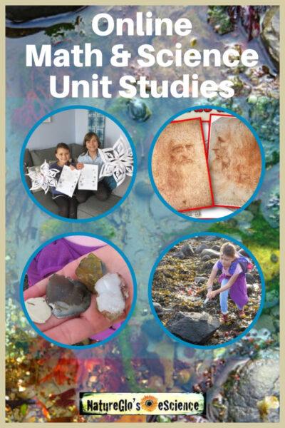 Online math and science unit studies