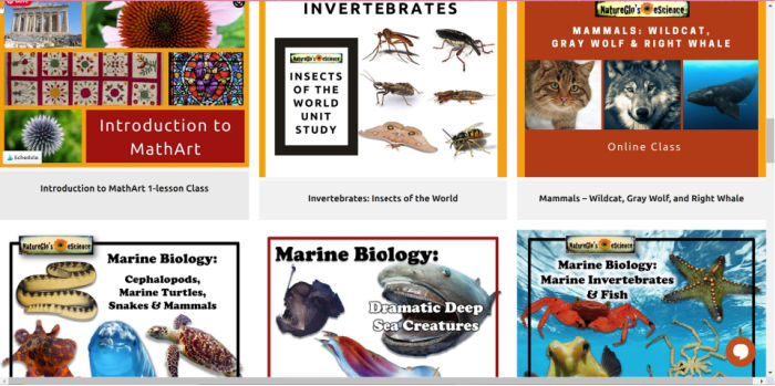 Selection of NatureGlo's eScience courses