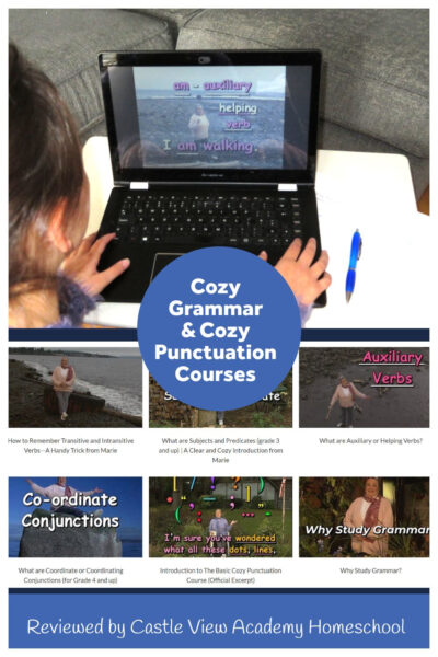 Cozy Punctuation Reviewed