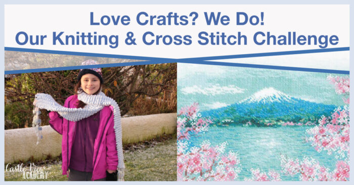 Love Crafts - Our Knitting and Cross Stitch Challenge