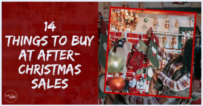 14 Things To Buy At After Christmas Sales