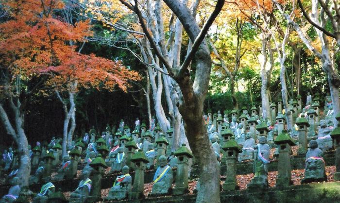 500 Buddhas, Toyama